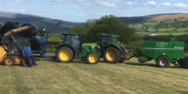 Harvest Time at Cantref Adventure Farm