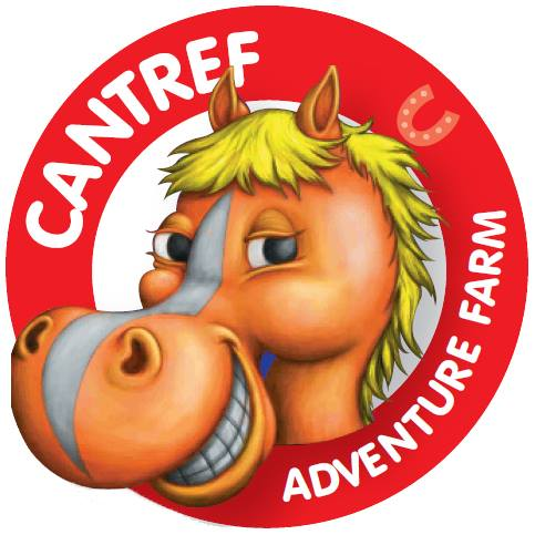 Christmas At Cantref